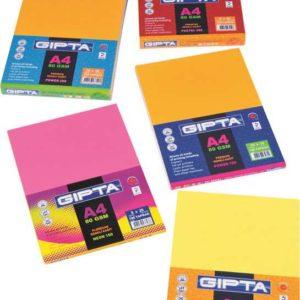 GIPTA-KAĞIT ÜRÜNLERİ-Fotokopi Ve Baskı Kağıtları-Renkli Fotokopi Kağıdı-Gıpta Neon-100 A4 Renkli Kağıt 100Lük Paket (5X20 Yaprak )