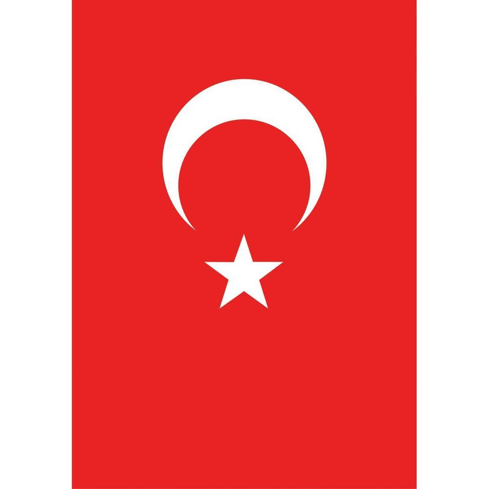 Vatan Bayrak Polyester 150X225 Cm